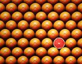 Grapefruit slice between group — Stok fotoğraf