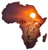 African Wildlife Map — Stock Photo