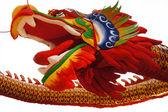 Tête de dragon — Photo