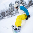 Stock Photo: Winter womwith snowboard