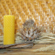 Beeswax candles - Stock Photo