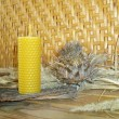 Beeswax candles — Stock Photo #9101066