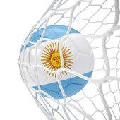 Argentinean soccer ball inside the net — Stock Photo