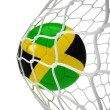Jamaican soccer ball inside the net — Stock Photo