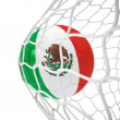 Mexican soccer ball inside the net — Stock Photo