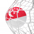 Singaporean soccer ball inside the net — Stock Photo