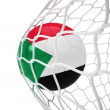Sudanese soccer ball inside the net — Stock Photo
