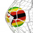 Zimbabwean soccer ball inside the net — Stock Photo