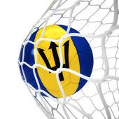 Barbadian soccer ball inside the net — Stock Photo