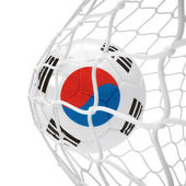 South Korean soccer ball inside the net — Stock Photo