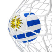 Uruguayan soccer ball inside the net — Stock Photo