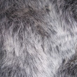 Fake Fur - Stock fotografie