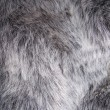 Fake Fur - Stockfoto