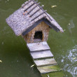 Duck house — Stock Photo