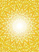 Sunny background — Stock Photo
