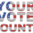 Foto de Stock  : Your Vote Counts