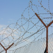 Barbed wire fence - Stock Photo