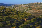 Wadi el-Jundi with view of jerusalem — Stock Photo