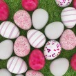 Easter eggs — Stock Photo #9665682