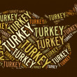 Roast Turkey text graphic — Photo
