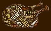 Asado turquía texto gráfico — Foto de Stock
