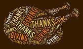 благодарения индейки — Стоковое фото