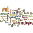 Web Technology word cloud isolated — Stock Photo