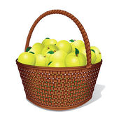 Vector Apple Basket — Stock Vector
