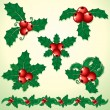 Royalty-Free Stock Vector Image: Holly Decoration