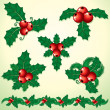 Holly Decoration - Stockvectorbeeld