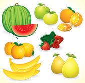 Fresh Fruits Set — Stock Vector