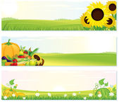 Fresh Nature Banners — Stock Vector