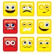 Square Faces — Stock Vector