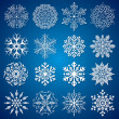 Detailed Snowflakes — Stock Vector
