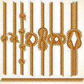 Vector Thread — Stock Vector