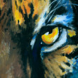 Eye of tiger - Stock Photo
