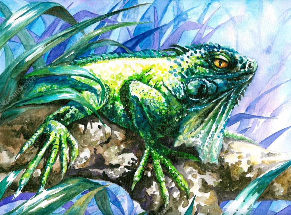 Green reptile watercolor painted.Picture I have painted by myself.  — Stock Photo #8055018