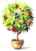 Colorful tree — Stock Photo