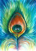 Piuma di pavone — Foto Stock