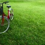 Bike — Stock Photo #8147592