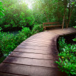 Path — Stock Photo #8147742