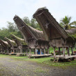 Toraja - Stock Photo
