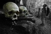 Bones — Stock Photo
