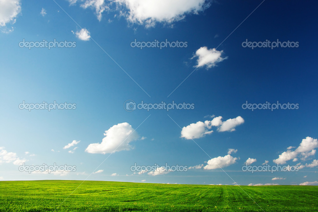 Meadow with a green grass and blue sky with clouds — Stock Photo #8147961