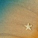 Starfish — Stock Photo #8150900