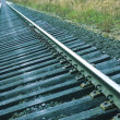 railroad — Stock Photo #8151547
