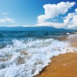 Sea coastline — Stock Photo