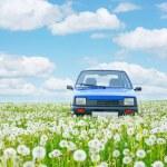 Little car — Stock Photo