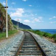Railroad — Stock Photo #8152581