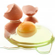 Broken egg  — Stock Photo